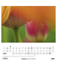 Noldes Blumengarten 2019 - Produktdetailbild 6
