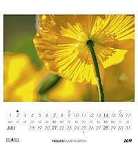 Noldes Blumengarten 2019 - Produktdetailbild 7