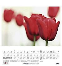 Noldes Blumengarten 2019 - Produktdetailbild 12