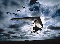 Nomaden der Lüfte, 2 DVDs - Produktdetailbild 4