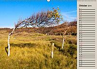 NORDERNEY Geburtstagskalender mit Planerfunktion (Wandkalender 2019 DIN A2 quer) - Produktdetailbild 10