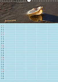 Nordische Sand-Schönheiten (Wandkalender 2019 DIN A3 hoch) - Produktdetailbild 1
