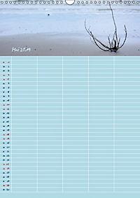 Nordische Sand-Schönheiten (Wandkalender 2019 DIN A3 hoch) - Produktdetailbild 5