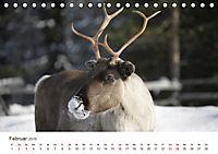 Nordische Szenerien (Tischkalender 2019 DIN A5 quer) - Produktdetailbild 2