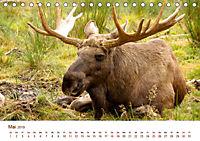 Nordische Szenerien (Tischkalender 2019 DIN A5 quer) - Produktdetailbild 5