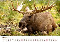 Nordische Szenerien (Wandkalender 2019 DIN A3 quer) - Produktdetailbild 5