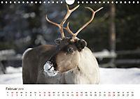 Nordische Szenerien (Wandkalender 2019 DIN A4 quer) - Produktdetailbild 2