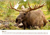 Nordische Szenerien (Wandkalender 2019 DIN A4 quer) - Produktdetailbild 5