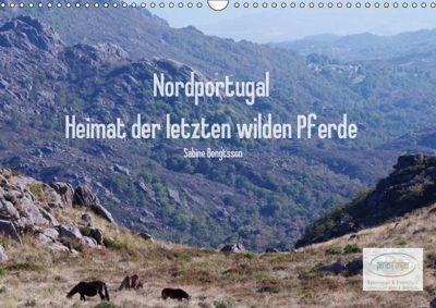 Nordportugal - Heimat der letzten wilden Pferde (Wandkalender 2019 DIN A3 quer), Sabine Bengtsson