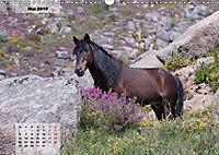 Nordportugal - Heimat der letzten wilden Pferde (Wandkalender 2019 DIN A3 quer) - Produktdetailbild 5
