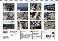 Nordportugal - Heimat der letzten wilden Pferde (Wandkalender 2019 DIN A3 quer) - Produktdetailbild 13