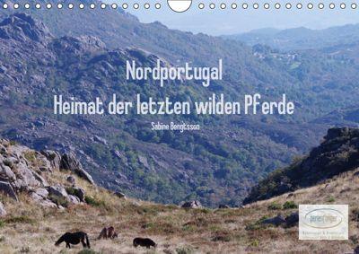 Nordportugal - Heimat der letzten wilden Pferde (Wandkalender 2019 DIN A4 quer), Sabine Bengtsson