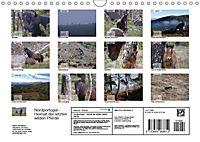 Nordportugal - Heimat der letzten wilden Pferde (Wandkalender 2019 DIN A4 quer) - Produktdetailbild 13