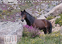 Nordportugal - Heimat der letzten wilden Pferde (Tischkalender 2019 DIN A5 quer) - Produktdetailbild 5