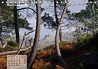 Nordportugal - Heimat der letzten wilden Pferde (Tischkalender 2019 DIN A5 quer) - Produktdetailbild 11