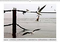 Nordseefeeling - Cuxhaven (Wandkalender 2019 DIN A3 quer) - Produktdetailbild 1