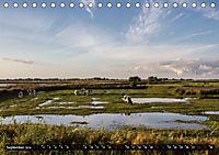 Nordseeinsel Pellworm 2019 (Tischkalender 2019 DIN A5 quer) - Produktdetailbild 9