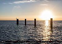 Nordseeinsel Pellworm 2019 (Wandkalender 2019 DIN A2 quer) - Produktdetailbild 5