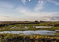 Nordseeinsel Pellworm 2019 (Wandkalender 2019 DIN A2 quer) - Produktdetailbild 9