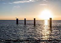 Nordseeinsel Pellworm 2019 (Wandkalender 2019 DIN A3 quer) - Produktdetailbild 5