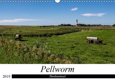Nordseeinsel Pellworm 2019 (Wandkalender 2019 DIN A3 quer), Beate Kötzsch