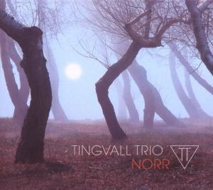 Norr, Martin Tingvall