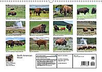 North American Bison (Wall Calendar 2019 DIN A3 Landscape) - Produktdetailbild 13