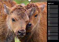 North America's Wildlife (Wall Calendar 2019 DIN A3 Landscape) - Produktdetailbild 4