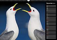 North America's Wildlife (Wall Calendar 2019 DIN A3 Landscape) - Produktdetailbild 12