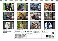 North America's Wildlife (Wall Calendar 2019 DIN A3 Landscape) - Produktdetailbild 13