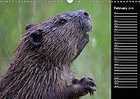 North America's Wildlife (Wall Calendar 2019 DIN A3 Landscape) - Produktdetailbild 2