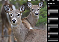 North America's Wildlife (Wall Calendar 2019 DIN A3 Landscape) - Produktdetailbild 8