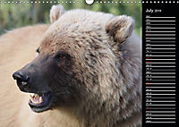 North America's Wildlife (Wall Calendar 2019 DIN A3 Landscape) - Produktdetailbild 7