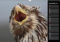 North America's Wildlife (Wall Calendar 2019 DIN A3 Landscape) - Produktdetailbild 11