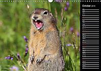 North America's Wildlife (Wall Calendar 2019 DIN A3 Landscape) - Produktdetailbild 10