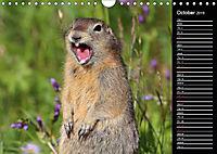 North America's Wildlife (Wall Calendar 2019 DIN A4 Landscape) - Produktdetailbild 10