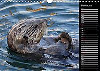 North America's Wildlife (Wall Calendar 2019 DIN A4 Landscape) - Produktdetailbild 3