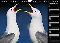 North America's Wildlife (Wall Calendar 2019 DIN A4 Landscape) - Produktdetailbild 12