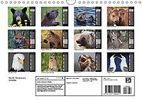 North America's Wildlife (Wall Calendar 2019 DIN A4 Landscape) - Produktdetailbild 13