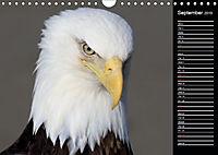 North America's Wildlife (Wall Calendar 2019 DIN A4 Landscape) - Produktdetailbild 9