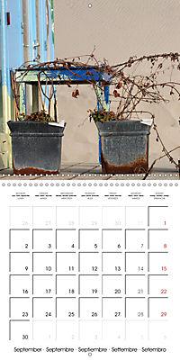North Holland (Wall Calendar 2019 300 × 300 mm Square) - Produktdetailbild 9