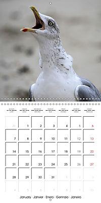 North Holland (Wall Calendar 2019 300 × 300 mm Square) - Produktdetailbild 1