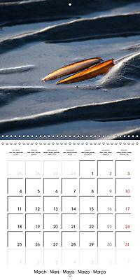 North Holland (Wall Calendar 2019 300 × 300 mm Square) - Produktdetailbild 3