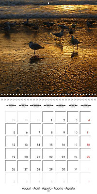 North Holland (Wall Calendar 2019 300 × 300 mm Square) - Produktdetailbild 8