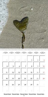 North Holland (Wall Calendar 2019 300 × 300 mm Square) - Produktdetailbild 11