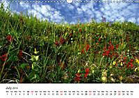 NORTHERN NORWAY - LOW SPEED! (Wall Calendar 2019 DIN A3 Landscape) - Produktdetailbild 7