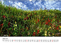 NORTHERN NORWAY - LOW SPEED! (Wall Calendar 2019 DIN A3 Landscape) - Produktdetailbild 7