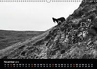 Northumberland Black and White (Wall Calendar 2019 DIN A3 Landscape) - Produktdetailbild 11