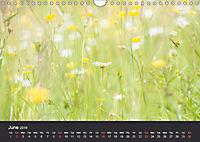 Northumbrian Landscapes (Wall Calendar 2019 DIN A4 Landscape) - Produktdetailbild 6