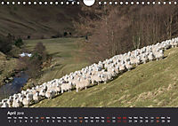 Northumbrian Landscapes (Wall Calendar 2019 DIN A4 Landscape) - Produktdetailbild 4